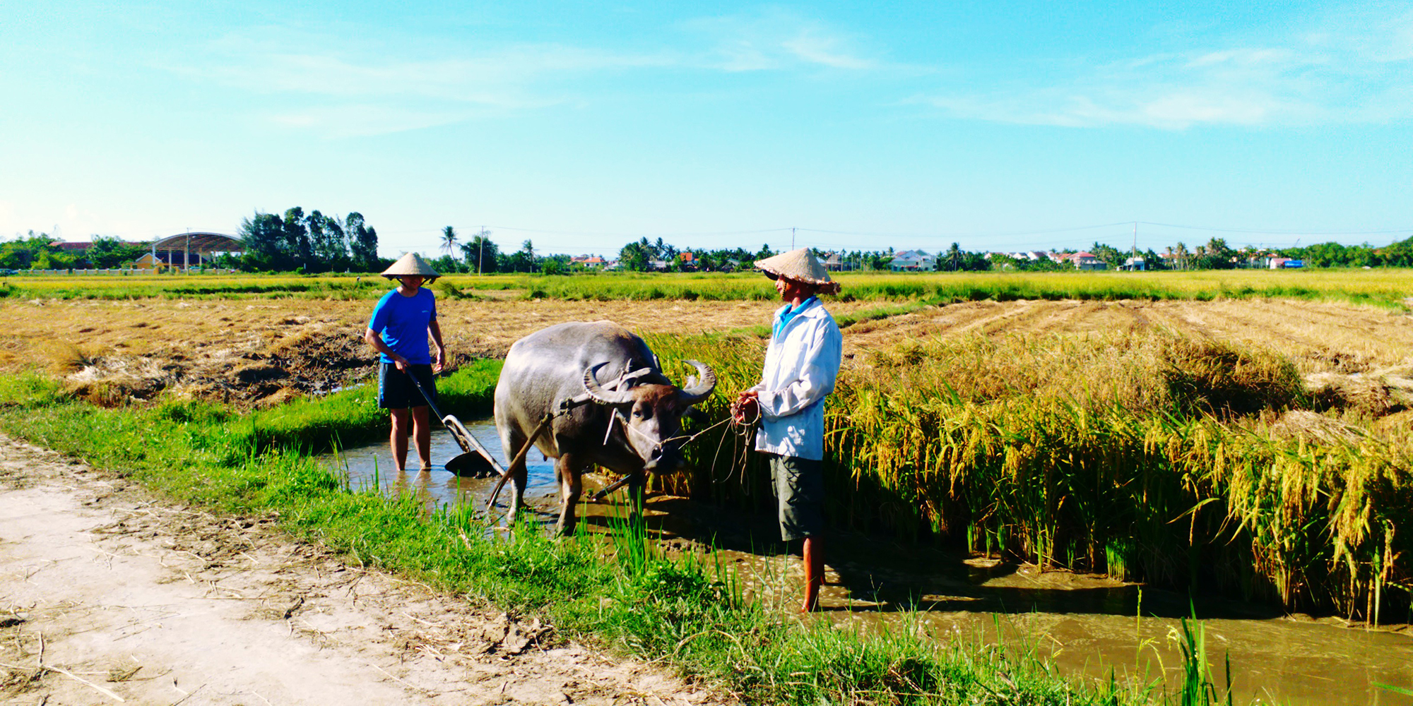 1. Farming and Fishing Life Experience (Small Group Bicycle Tour)